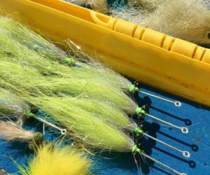 Panama City Beach fishing reports